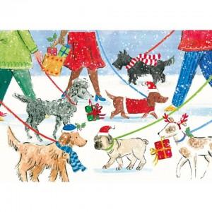 Vianočná prechádzka so psíkmi @ Výcviková škola psov Komárno | Komárno | Nitriansky kraj | Slovensko